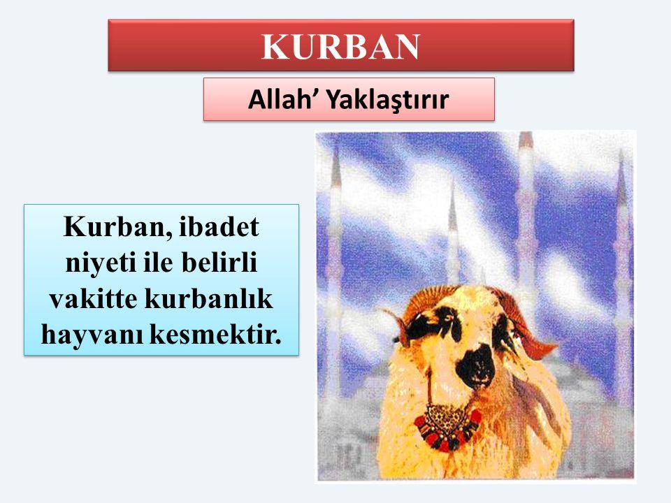 KURBAN Allah' Yaklaştırır Kurban, ibadet niyeti ile belirli vakitte kurbanlık hayvanı kesmektir.