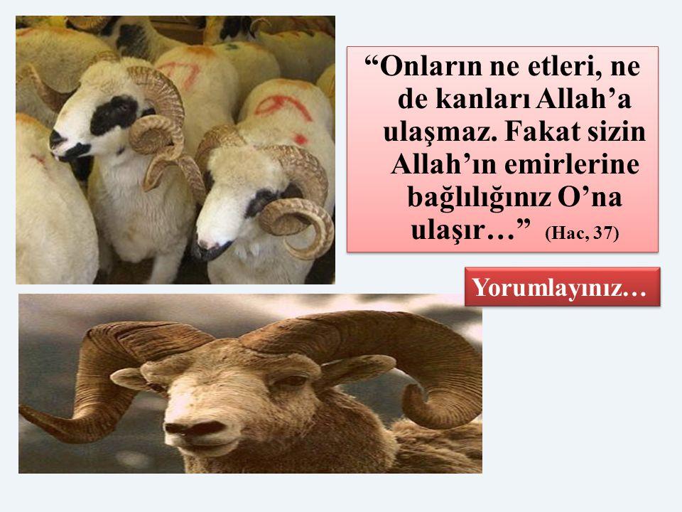 """""""Onların ne etleri, ne de kanları Allah'a ulaşmaz. Fakat sizin Allah'ın emirlerine bağlılığınız O'na ulaşır…"""" (Hac, 37) Yorumlayınız…"""