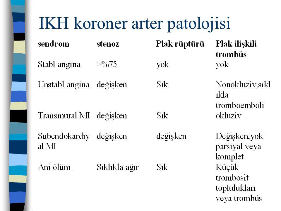 IKH koroner arter patolojisi