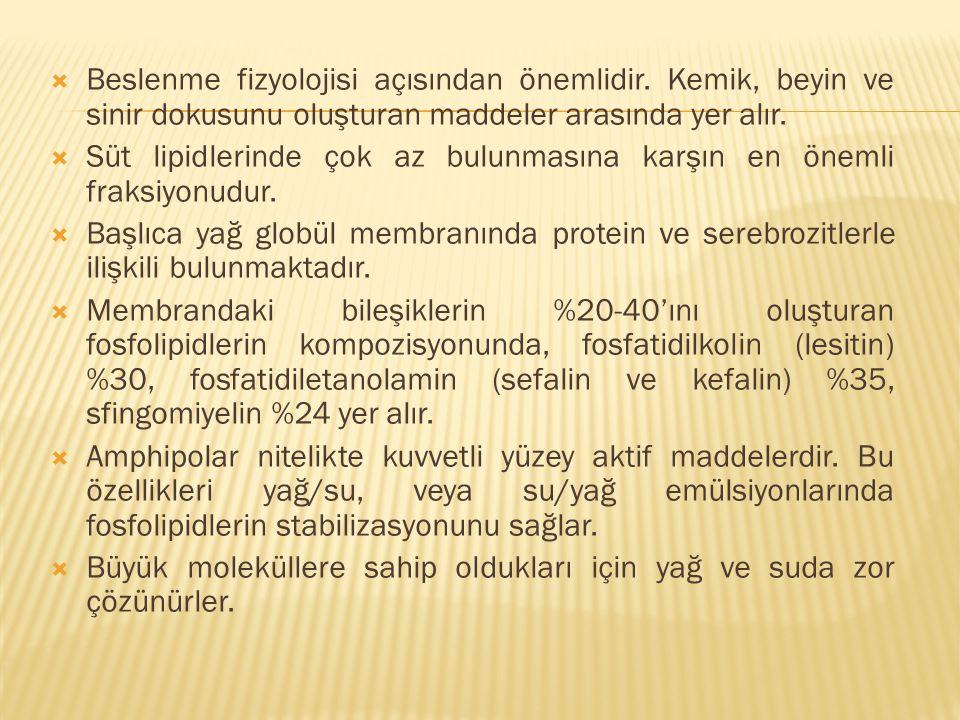  Beslenme fizyolojisi açısından önemlidir.