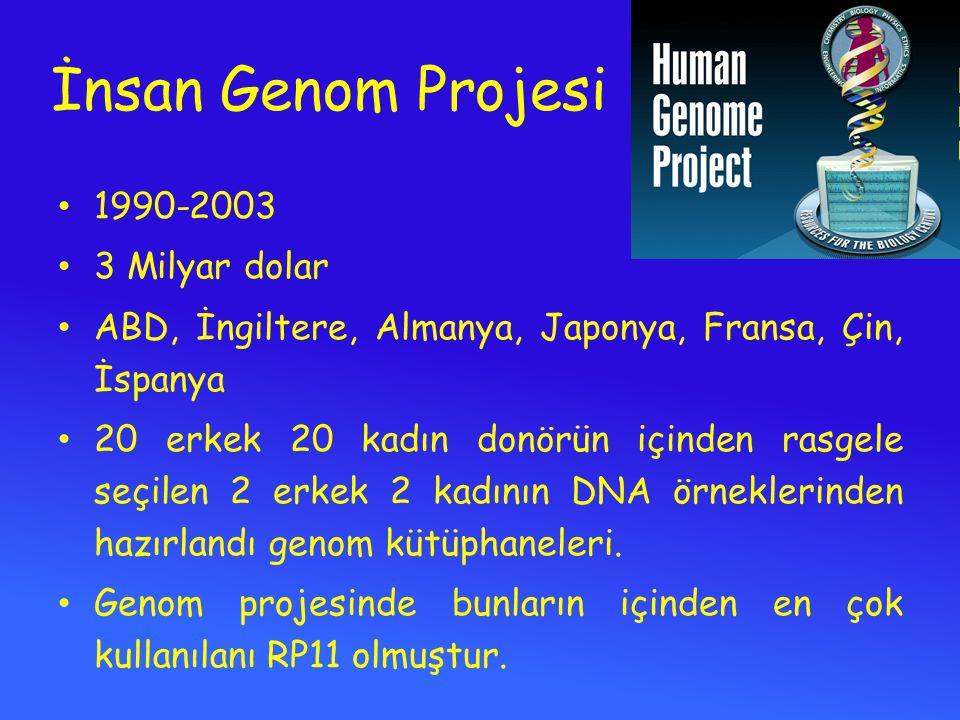İnsan Genom Projesi 1990-2003 3 Milyar dolar ABD, İngiltere, Almanya, Japonya, Fransa, Çin, İspanya 20 erkek 20 kadın donörün içinden rasgele seçilen