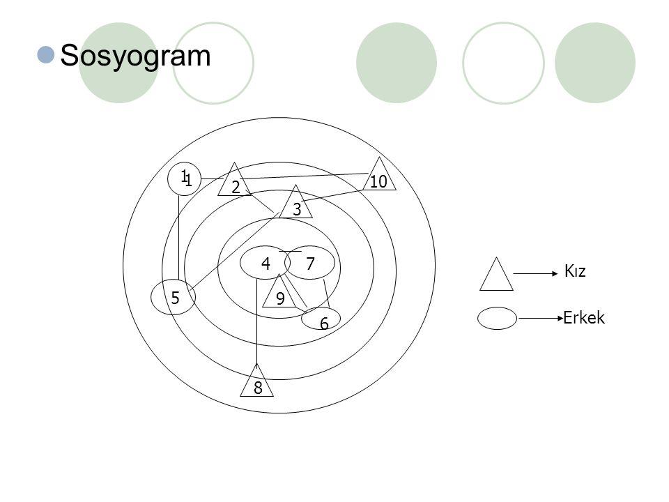 Sosyogram 1 2 1 3 4 5 6 7 89 10 Kız Erkek