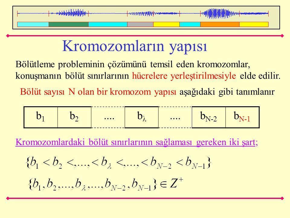Kromozomların yapısı Bölütleme probleminin çözümünü temsil eden kromozomlar, konuşmanın bölüt sınırlarının hücrelere yerleştirilmesiyle elde edilir. B