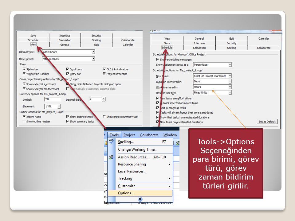 Tools->Options Seçeneğinden para birimi, görev türü, görev zaman bildirim türleri girilir.