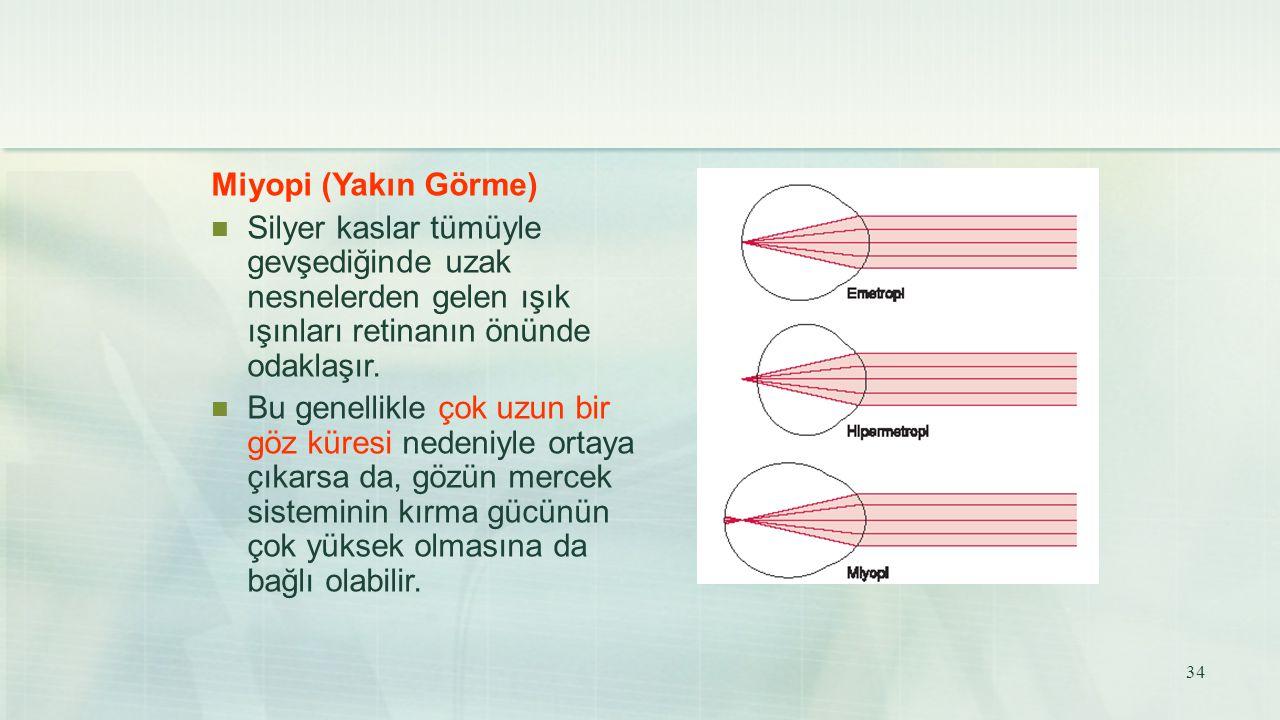 Miyopi (Yakın Görme) Silyer kaslar tümüyle gevşediğinde uzak nesnelerden gelen ışık ışınları retinanın önünde odaklaşır. Bu genellikle çok uzun bir gö