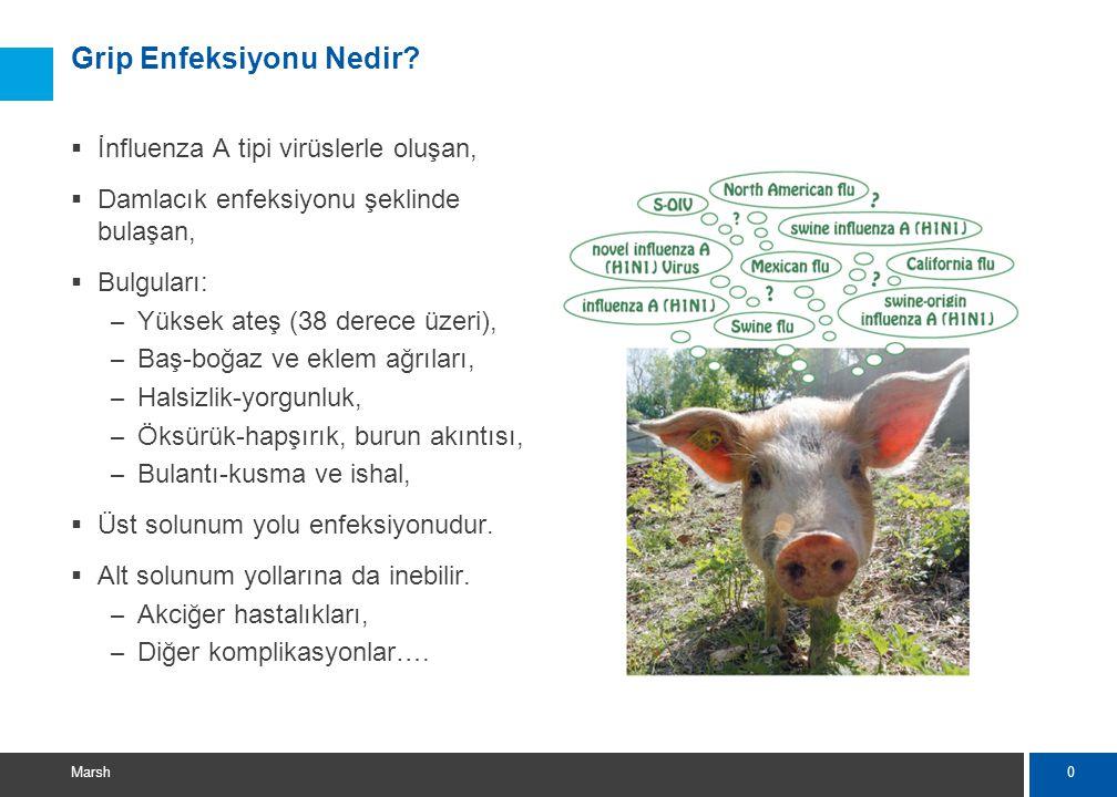 11 Marsh Hastalık şüphesi durumunda  Kamu hastanelerine başvurulması, (İstanbul için) – Haydarpaşa Numune EA Hastanesi, – Göztepe EA Hastanesi, – Kartal EA Hastanesi, – Şişli Etfal EA Hastanesi, – Okmeydanı EA Hastanesi, – Haseki EA Hastanesi, – İstanbul EA Hastanesi,  Kesin tanı için tetkik yapılıyor (PCR testi), – İstanbul'da İstanbul Tıp Fakültesi Viroloji Laboratuvarı, – Ankara'da Refik Saydam Laboratuvarı,