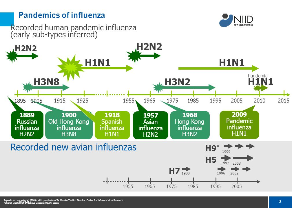 3 Marsh Pandemics of influenza H7 H5 H9 * 1980 1997 Recorded new avian influenzas 19962002 1999 2003 195519651975198519952005 H1N1 H2N2 1889 Russian influenza H2N2 1957 Asian influenza H2N2 H3N2 1968 Hong Kong influenza H3N2 H3N8 1900 Old Hong Kong influenza H3N8 1918 Spanish influenza H1N1 19151925195519651975198519952005 18951905 2010 2015 2009 Pandemic influenza H1N1 Recorded human pandemic influenza (early sub-types inferred) Reproduced and adapted (2009) with permission of Dr Masato Tashiro, Director, Center for Influenza Virus Research, National Institute of Infectious Diseases (NIID), Japan.