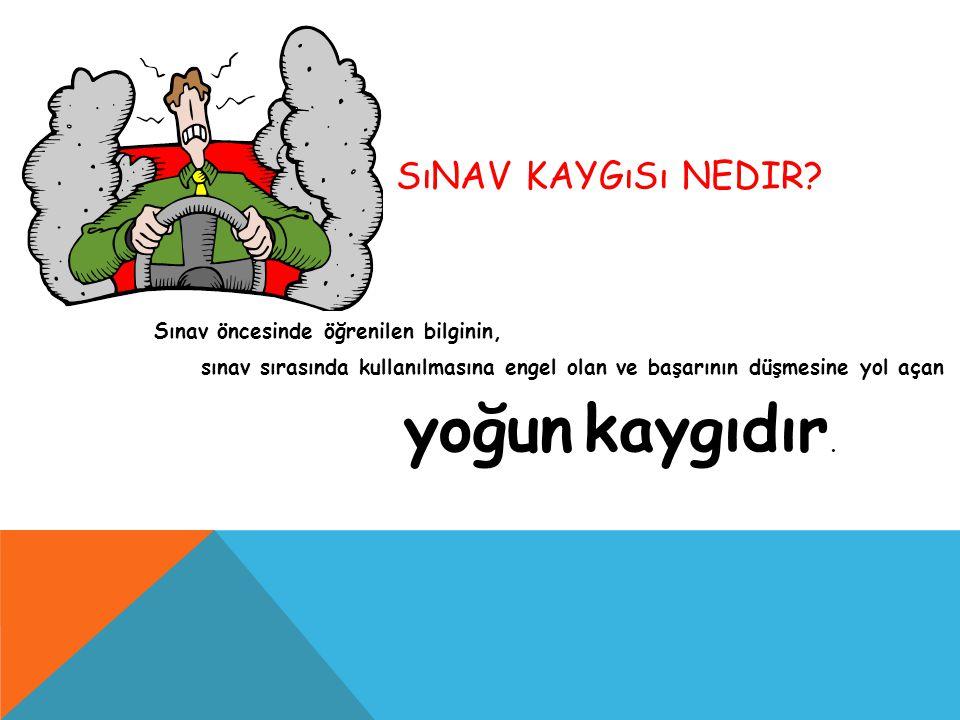 SıNAV KAYGıSı NEDIR.