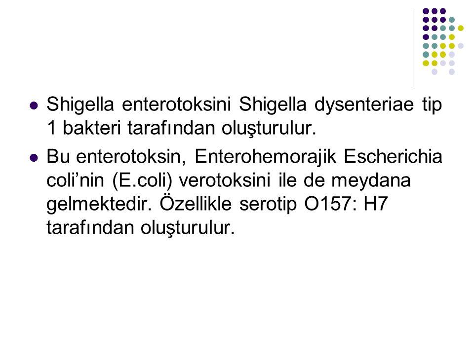 Shigella enterotoksini Shigella dysenteriae tip 1 bakteri tarafından oluşturulur. Bu enterotoksin, Enterohemorajik Escherichia coli'nin (E.coli) verot