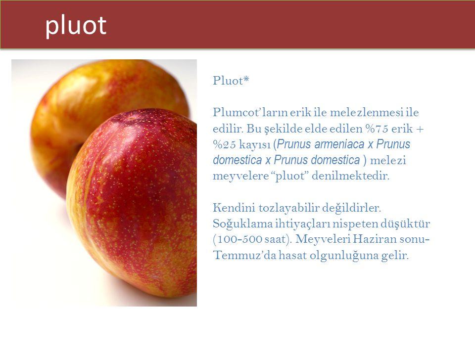 pluot Pluot* Plumcot'ların erik ile melezlenmesi ile edilir. Bu ş ekilde elde edilen %75 erik + %25 kayısı ( Prunus armeniaca x Prunus domestica x Pru