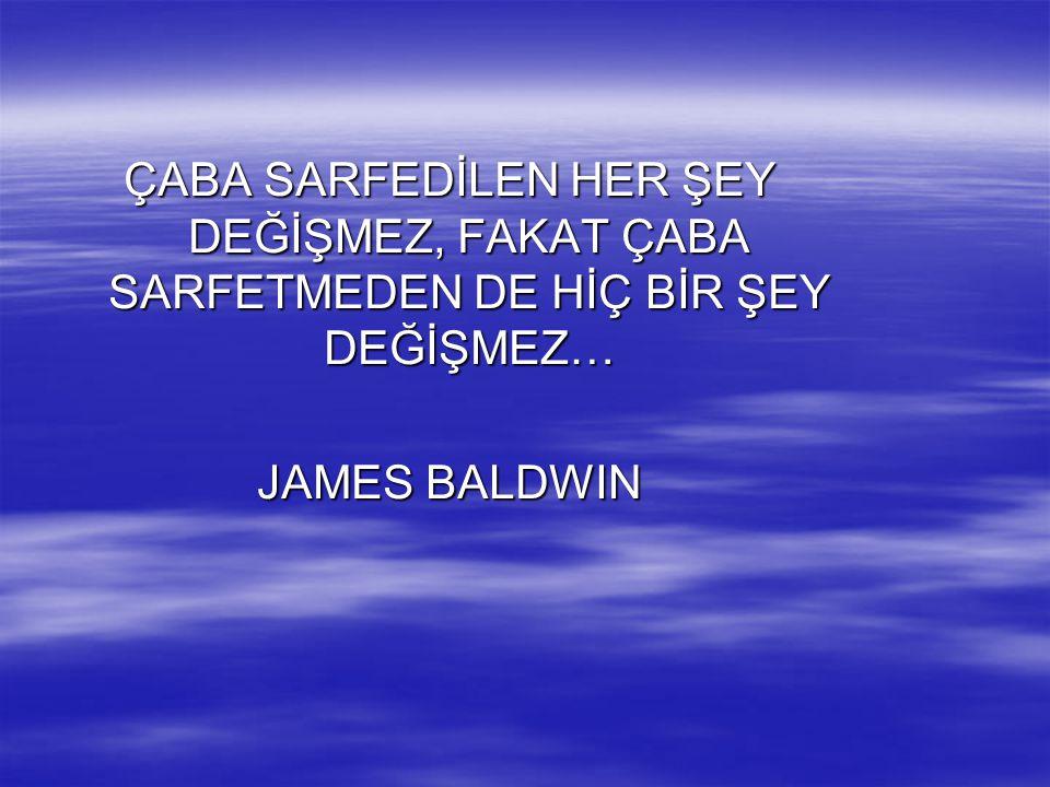 ÇABA SARFEDİLEN HER ŞEY DEĞİŞMEZ, FAKAT ÇABA SARFETMEDEN DE HİÇ BİR ŞEY DEĞİŞMEZ… JAMES BALDWIN