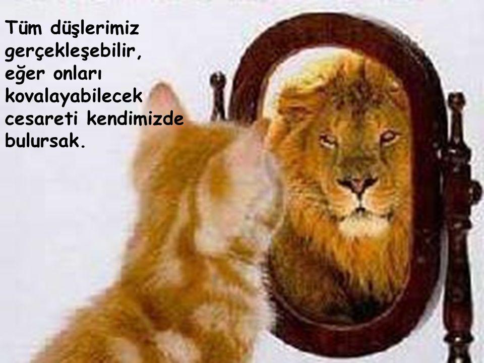 Tüm düşlerimiz gerçekleşebilir, eğer onları kovalayabilecek cesareti kendimizde bulursak. Tüm düşlerimiz gerçekleşebilir, eğer onları kovalayabilecek cesareti kendimizde bulursak.