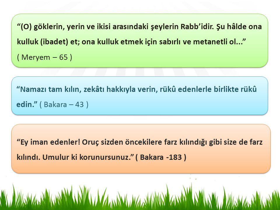 (O) göklerin, yerin ve ikisi arasındaki şeylerin Rabb'idir.