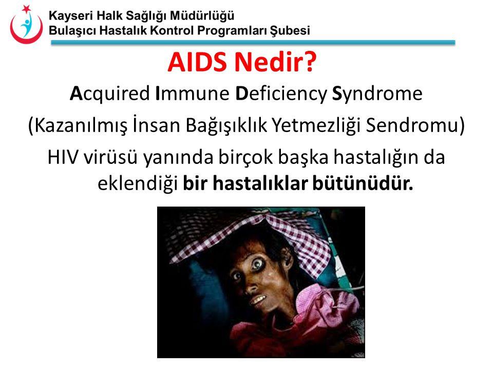 AIDS, günümüzde dünya çapında bir salgın boyutuna ulaşmıştır.