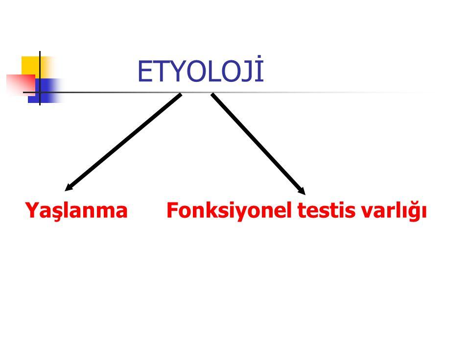ETYOLOJİ YaşlanmaFonksiyonel testis varlığı