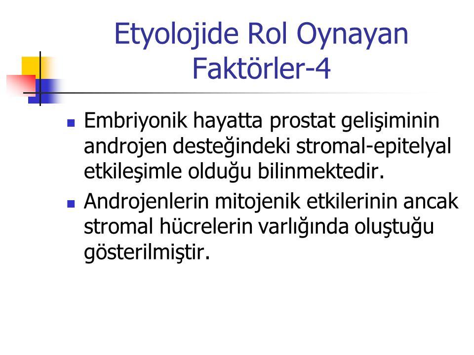 Etyolojide Rol Oynayan Faktörler-4 Embriyonik hayatta prostat gelişiminin androjen desteğindeki stromal-epitelyal etkileşimle olduğu bilinmektedir. An