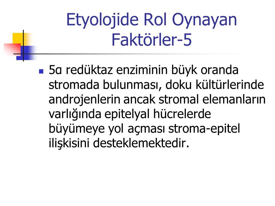 Etyolojide Rol Oynayan Faktörler-5 5α redüktaz enziminin büyk oranda stromada bulunması, doku kültürlerinde androjenlerin ancak stromal elemanların va