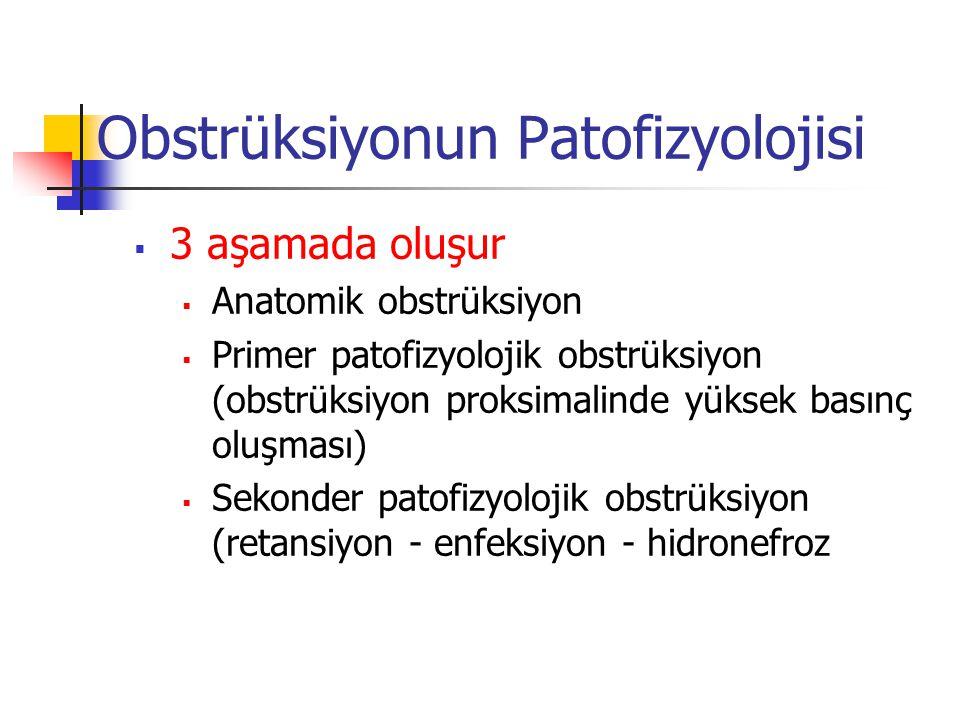 Obstrüksiyonun Patofizyolojisi  3 aşamada oluşur  Anatomik obstrüksiyon  Primer patofizyolojik obstrüksiyon (obstrüksiyon proksimalinde yüksek bası