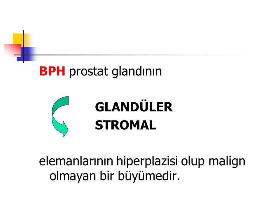 BPH prostat glandının GLANDÜLER STROMAL elemanlarının hiperplazisi olup malign olmayan bir büyümedir.