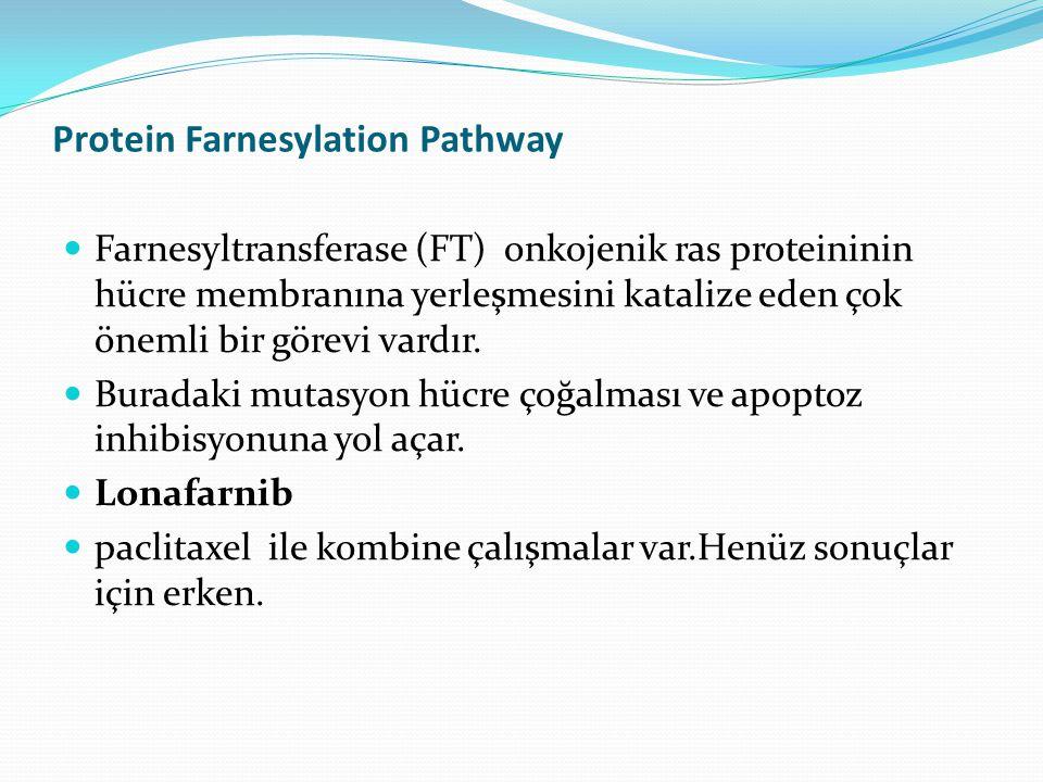 Protein Farnesylation Pathway Farnesyltransferase (FT) onkojenik ras proteininin hücre membranına yerleşmesini katalize eden çok önemli bir görevi vardır.