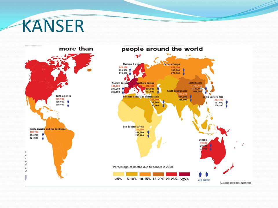 Türkiyede her yıl beklenen akciğer kanseri olgusu Total: 18.479 Erkek : 16.502 Kadın : 1.977