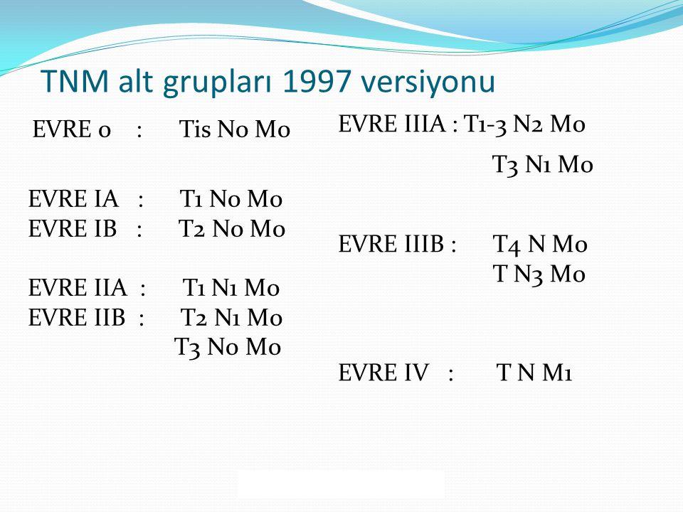 TNM alt grupları 1997 versiyonu EVRE 0 : Tis N0 M0 EVRE IA : T1 N0 M0 EVRE IB : T2 N0 M0 EVRE IIA : T1 N1 M0 EVRE IIB : T2 N1 M0 T3 N0 M0 EVRE IIIA : T1-3 N2 M0 T3 N1 M0 EVRE IIIB : T4 N M0 T N3 M0 EVRE IV : T N M1