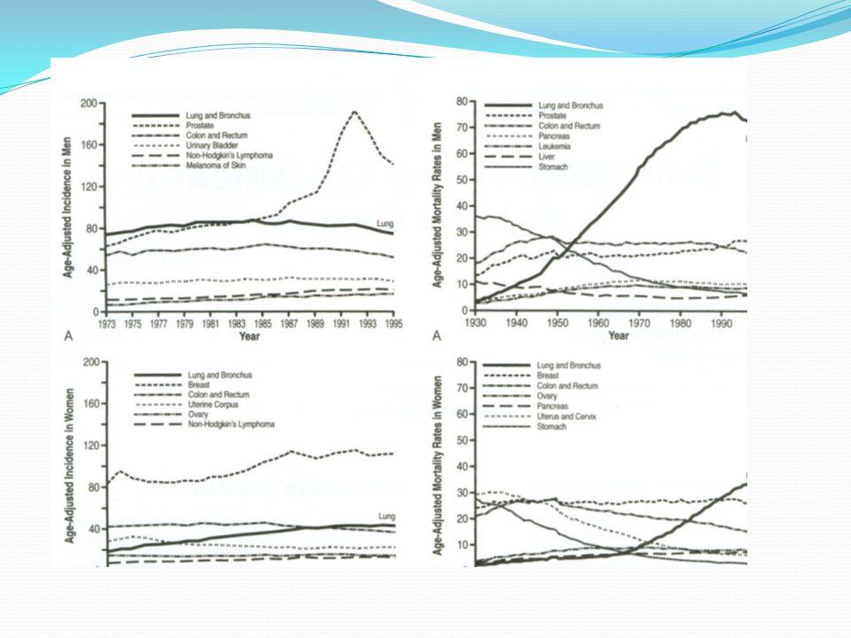Klinik evreleme Önerilen TNM 'ye göre sağkalım eğrileri 5. basımına göre sağkalım eğrileri