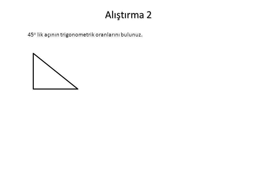 Alıştırma 2 45 o lik açının trigonometrik oranlarını bulunuz.