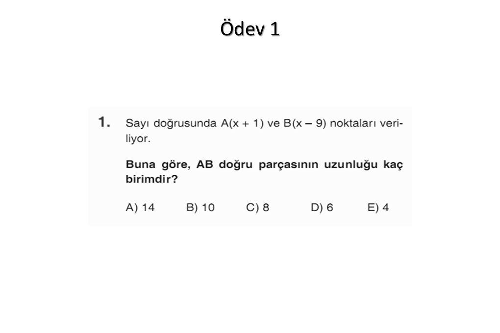 Ödev 1