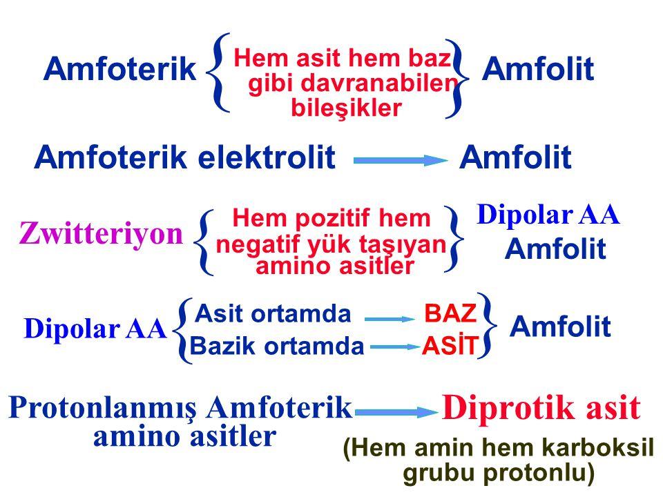 Hem asit hem baz gibi davranabilen bileşikler Amfoterik } } Amfolit Amfoterik elektrolitAmfolit } Hem pozitif hem negatif yük taşıyan amino asitler Zw