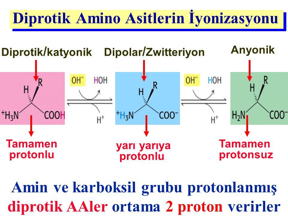 Amin ve karboksil grubu protonlanmış diprotik AAler ortama 2 proton verirler Diprotik Amino Asitlerin İyonizasyonu Dipolar / Zwitteriyon yarı yarıya p