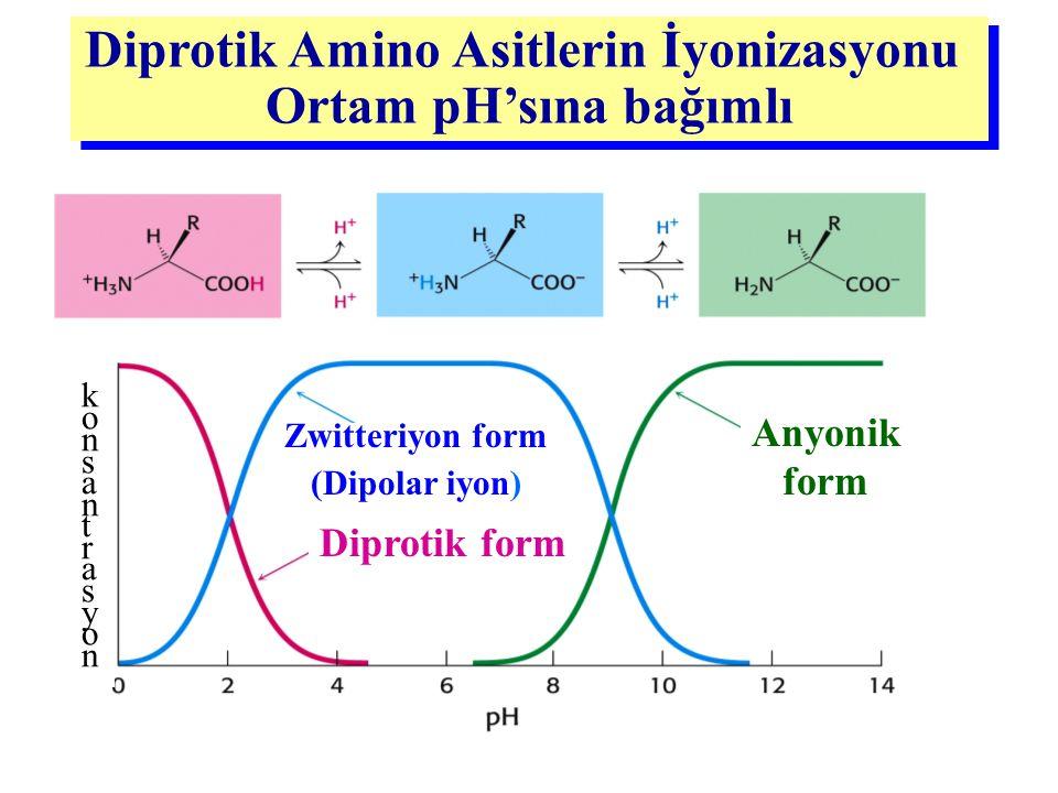 Zwitteriyon form (Dipolar iyon) konsantrasyonkonsantrasyon Diprotik form Anyonik form Diprotik Amino Asitlerin İyonizasyonu Ortam pH'sına bağımlı Dipr