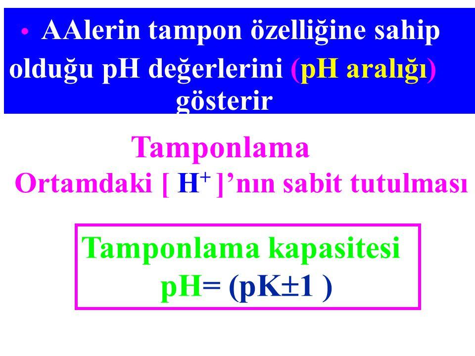 Tamponlama Ortamdaki [ H + ]'nın sabit tutulması AAlerin tampon özelliğine sahip olduğu pH değerlerini (pH aralığı) gösterir Tamponlama kapasitesi pH=