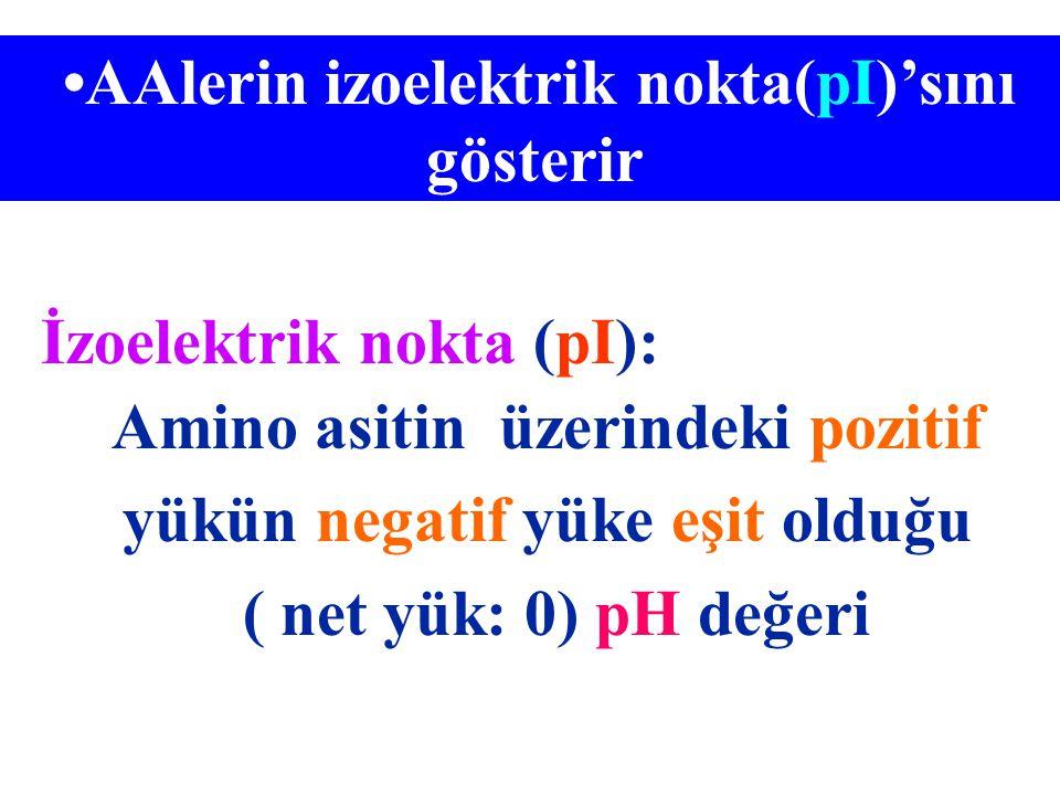 AAlerin izoelektrik nokta(pI)'sını gösterir İzoelektrik nokta (pI): Amino asitin üzerindeki pozitif yükün negatif yüke eşit olduğu ( net yük: 0) pH de