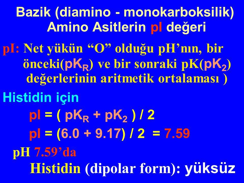 Histidin için pI = ( pK R + pK 2 ) / 2 pI = (6.0 + 9.17) / 2 = 7.59 pH 7.59'da Histidin (dipolar form): yüksüz Bazik (diamino - monokarboksilik) Amino