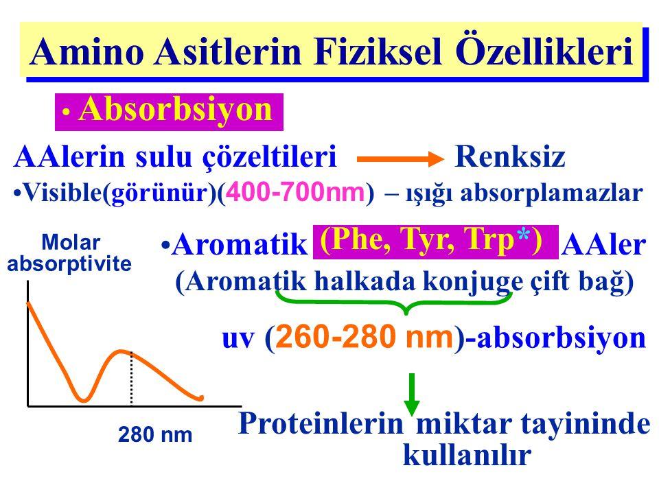 Absorbsiyon Amino Asitlerin Fiziksel Özellikleri 280 nm Molar absorptivite uv ( 260-280 nm )-absorbsiyon Proteinlerin miktar tayininde kullanılır AAle