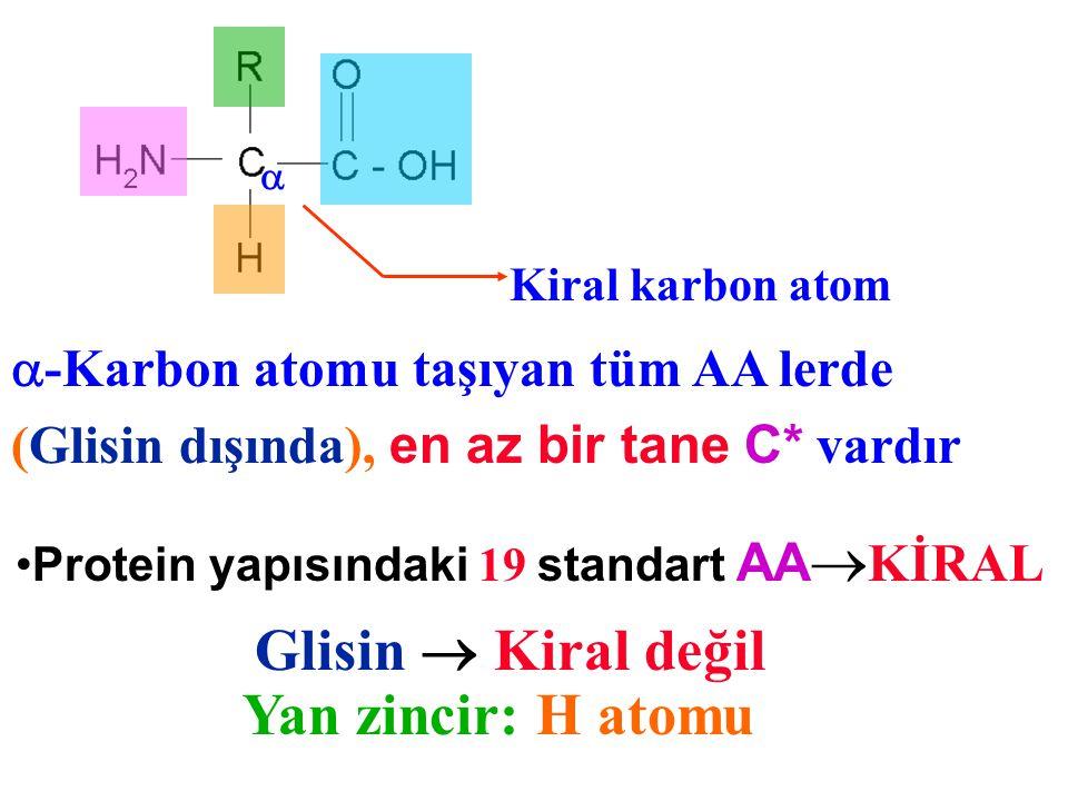 Kiral karbon atom  -Karbon atomu taşıyan tüm AA lerde (Glisin dışında), en az bir tane C* vardır Glisin  Kiral değil Yan zincir: H atomu Protein yap