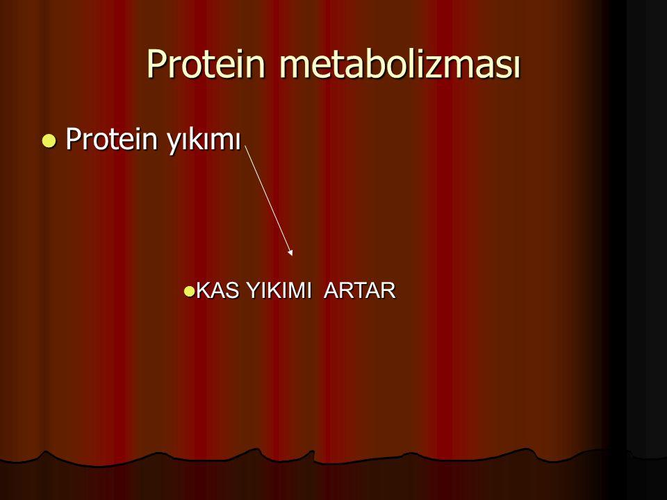 Protein metabolizması Protein yıkımı Protein yıkımı KAS YIKIMI ARTAR KAS YIKIMI ARTAR