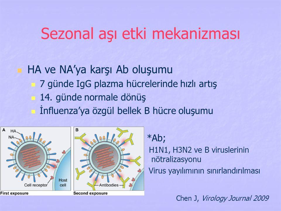 Sezonal aşı etki mekanizması HA ve NA'ya karşı Ab oluşumu 7 günde IgG plazma hücrelerinde hızlı artış 14. günde normale dönüş İnfluenza'ya özgül belle