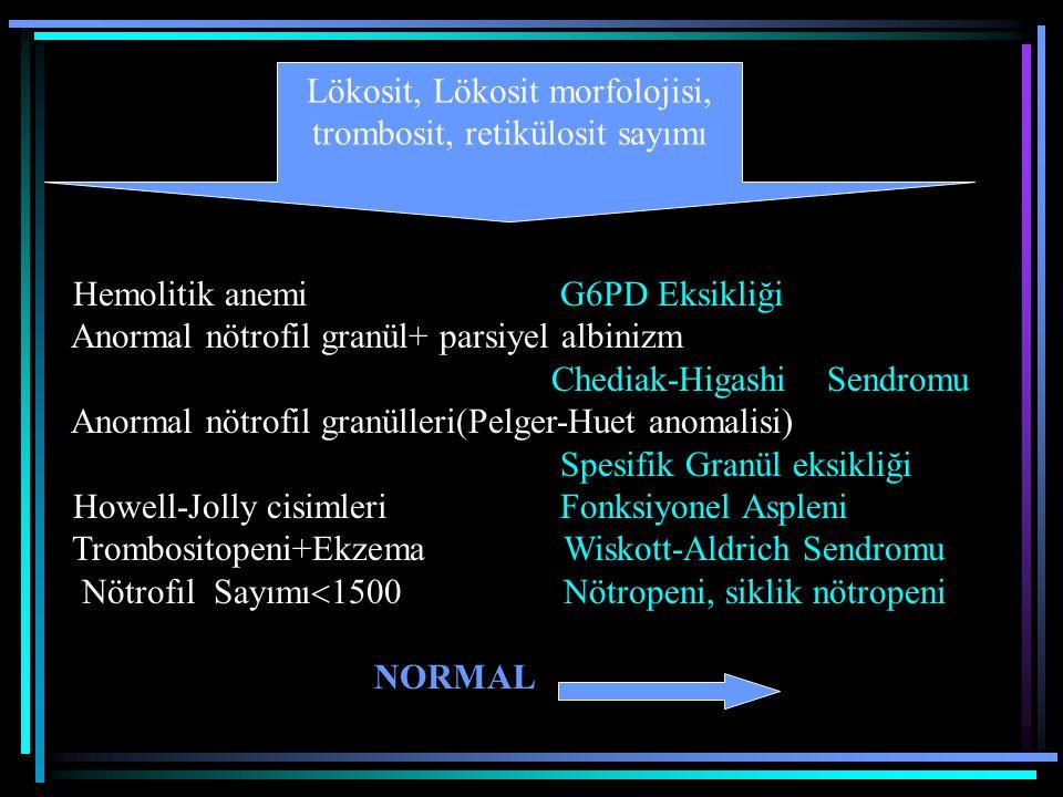 Hemolitik anemi G6PD Eksikliği Anormal nötrofil granül+ parsiyel albinizm Chediak-Higashi Sendromu Anormal nötrofil granülleri(Pelger-Huet anomalisi)