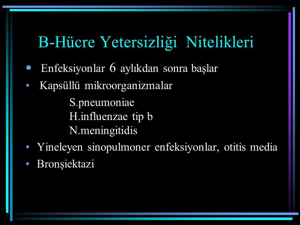 B-Hücre Yetersizliği Nitelikleri Enfeksiyonlar 6 aylıkdan sonra başlar Kapsüllü mikroorganizmalar S.pneumoniae H.influenzae tip b N.meningitidis Yinel