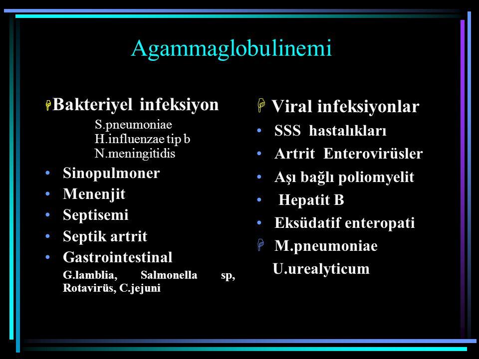 Agammaglobulinemi  Bakteriyel infeksiyon S.pneumoniae H.influenzae tip b N.meningitidis Sinopulmoner Menenjit Septisemi Septik artrit Gastrointestina