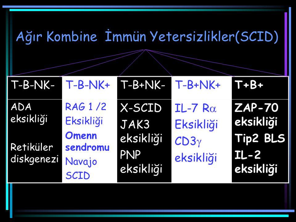 Ağır Kombine İmmün Yetersizlikler(SCID) T-B-NK-T-B-NK+T-B+NK-T-B+NK+T+B+ ADA eksikliği Retiküler diskgenezi RAG 1 /2 Eksikliği Omenn sendromu Navajo S