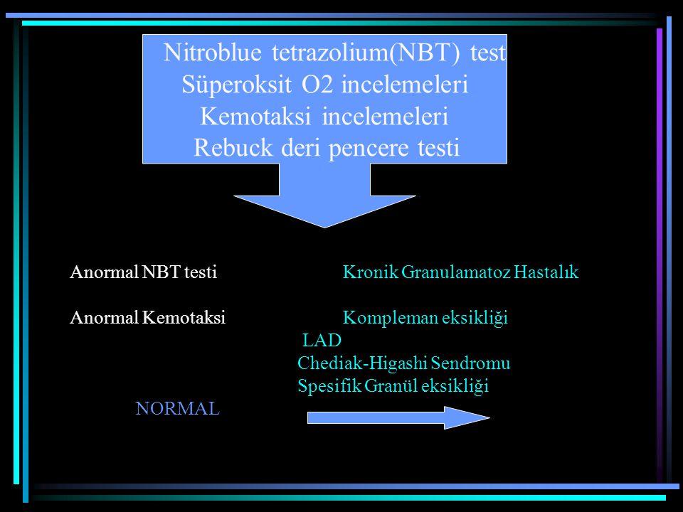 Nitroblue tetrazolium(NBT) test Süperoksit O2 incelemeleri Kemotaksi incelemeleri Rebuck deri pencere testi Anormal NBT testiKronik Granulamatoz Hasta