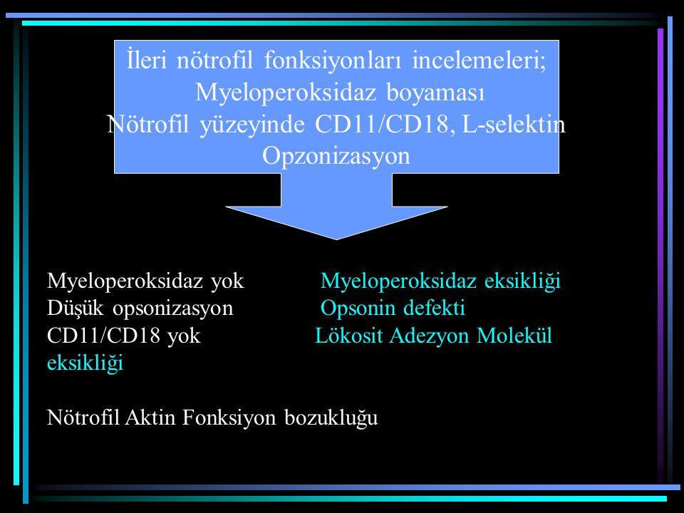 İleri nötrofil fonksiyonları incelemeleri; Myeloperoksidaz boyaması Nötrofil yüzeyinde CD11/CD18, L-selektin Opzonizasyon Myeloperoksidaz yokMyelopero