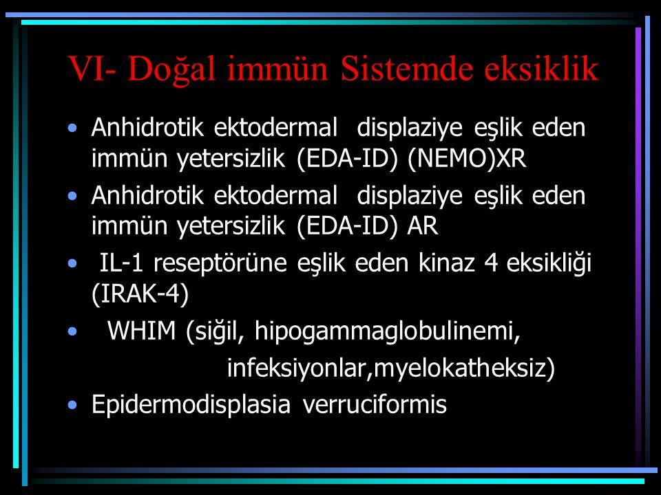 VI- Doğal immün Sistemde eksiklik Anhidrotik ektodermal displaziye eşlik eden immün yetersizlik (EDA-ID) (NEMO)XR Anhidrotik ektodermal displaziye eşl
