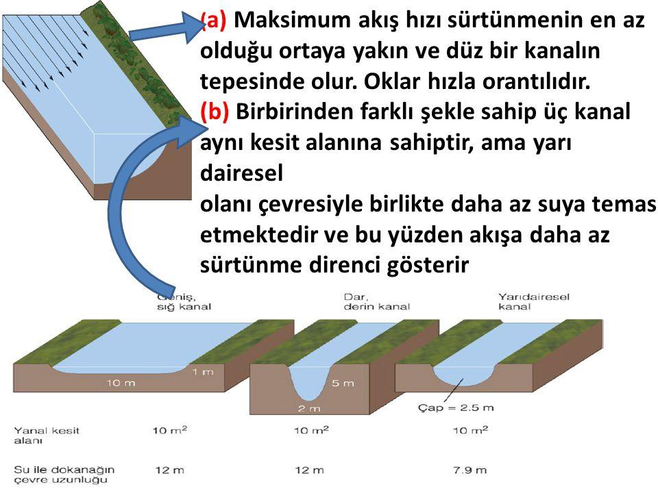 ( a) Maksimum akış hızı sürtünmenin en az olduğu ortaya yakın ve düz bir kanalın tepesinde olur. Oklar hızla orantılıdır. (b) Birbirinden farklı şekle