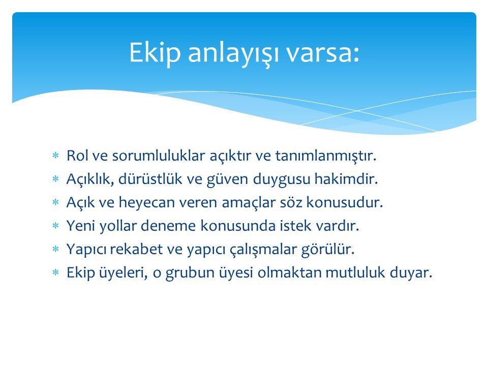  Bireysel kalite (Üye kalitesi): CV de yazan özellikler (bilgi, beceri, deneyim vb) ve duygusal olgunluk (zeka).