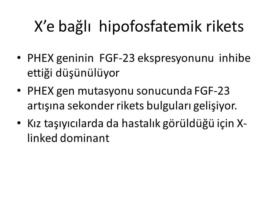 X'e bağlı hipofosfatemik rikets PHEX geninin FGF-23 ekspresyonunu inhibe ettiği düşünülüyor PHEX gen mutasyonu sonucunda FGF-23 artışına sekonder rikets bulguları gelişiyor.