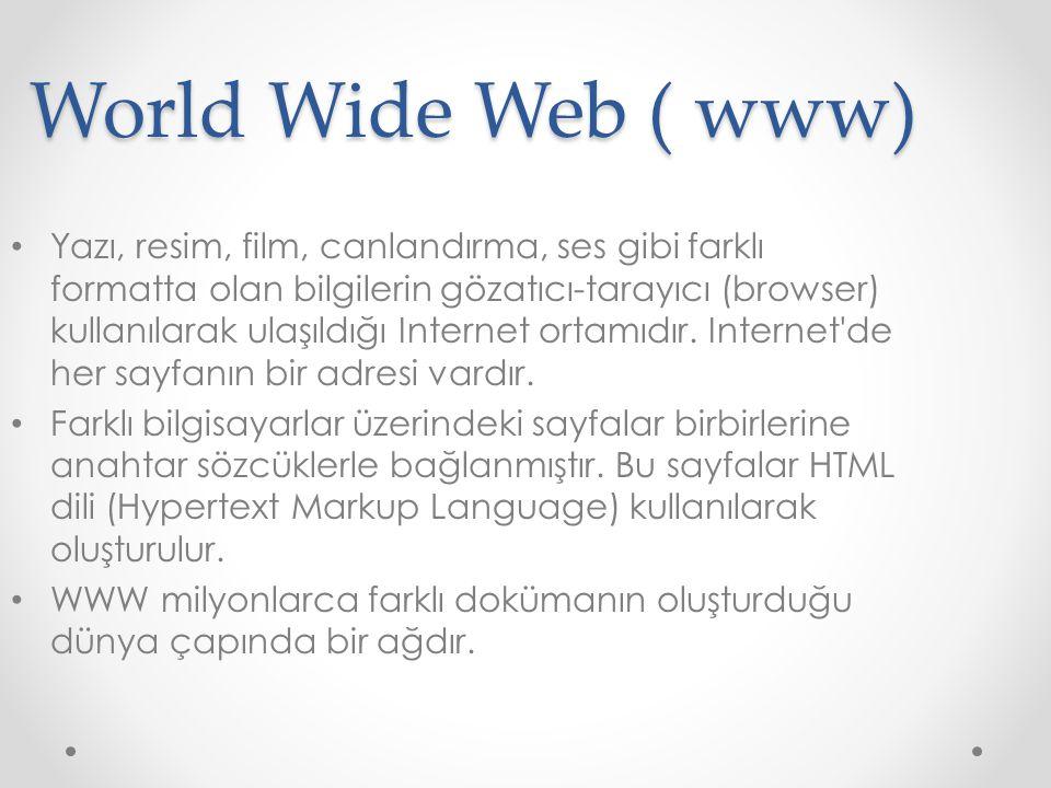 World Wide Web ( www) Yazı, resim, film, canlandırma, ses gibi farklı formatta olan bilgilerin gözatıcı-tarayıcı (browser) kullanılarak ulaşıldığı Int